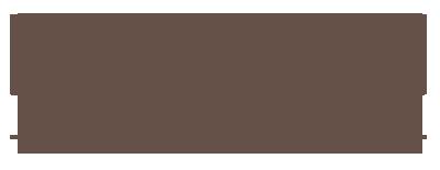 bolg-logo2-gross-braun